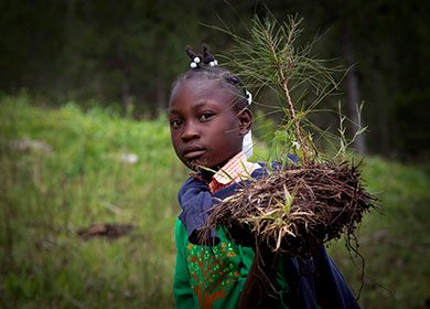 A young Haitian female student is getting ready to plant a tree to help restore a forest during International Environment Day. Courtesy of the United Nations and Logan Abassi.