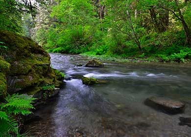 Mill Creek. Courtesy of NPS.